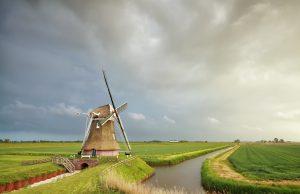 praca w Holandii od zaraz