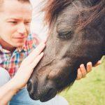 Wybieramy sprawdzone prezenty dla miłośnika i miłośniczki koni
