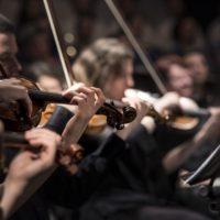 Ochroń skrzypce przed uszkodzeniami – wybierz futerał